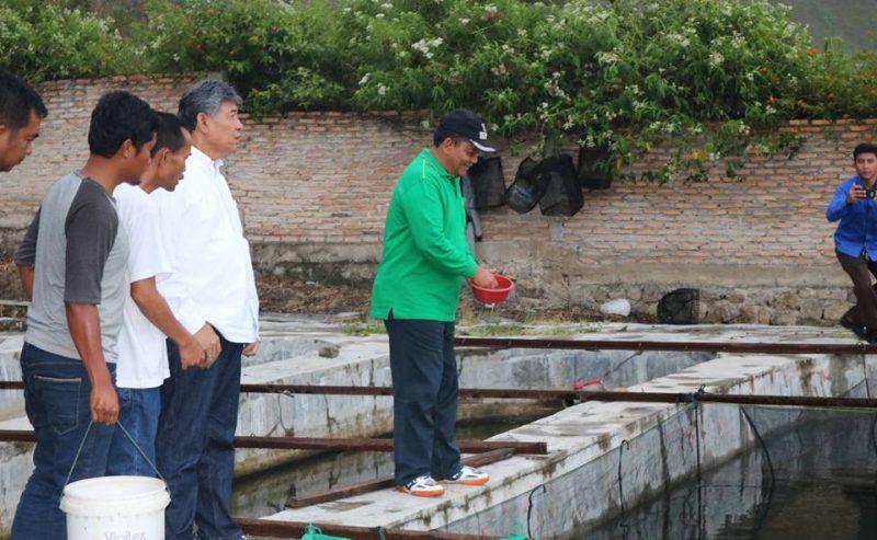 Bupati Samosir Meninjau BBI Kabupaten Samosir Dan Lokasi Rencana Pembangunan Patung Yesus Di Kecamatan Harian